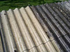 Adam et fils désamiantage des toits
